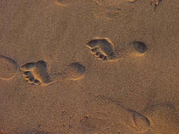 Fußabdrücke von Homo sapiens sapiens