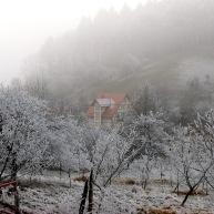 Ober Hambach